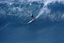 Title: Potz Wiamea Location: Hawaii Surfer: Potter, Martin Type: Big Waves