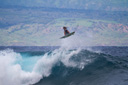 Title: Meola Flying Surfer: Meola, Matt Type: Action