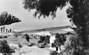 Title: San Clemente Pier 1940s Photo Of: stock Type: Classic Surf