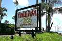 Title: Haleiwa Joes Photo Of: stock Type: Tourism