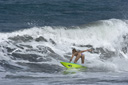 Title: Anastasia Bottom Turn Surfer: Ashley, Anastasia Type: Action