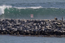 Title: Wedge Big Set Location: California Photo Of: stock Type: Big Waves