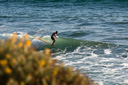 Title: Cyrus Perched on the Nose Surfer: Sutton, Cyrus Type: Longboard