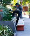 Title: Skater Planter Grind Photo Of: stock Type: Extreme Sports