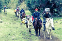 Title: Travel On Horseback Location: Chile Photo Of: stock Type: Lifestyle