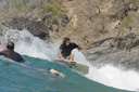 Title: Rasta Grab Rail Cutback Surfer: Rastovich, Dave Type: Action