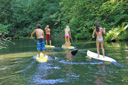 Title: Oregon River Paddlers Location: Oregon Photo Of: stock Type: Stand Up Paddle