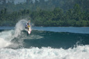 Title: Tyler Fins Free Surfer: Stanaland, Tyler Type: Action
