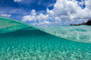 Title: Crystal Clear Location: Hawaii Photo Of: stock Type: Underwater