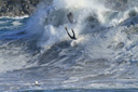 Title: Wedge Nosedive Photo Of: stock Type: Wipeouts